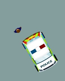 Polis Saldırısı